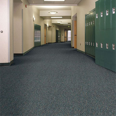 Philadelphia Commercial Carpet | Sarasota, FL